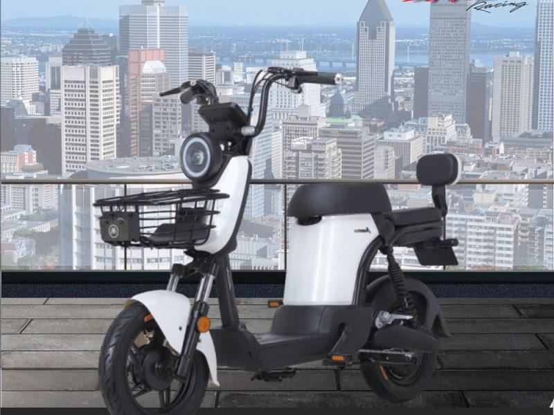 6 E350 2 AIMA Peru - Motos Electricas Peru